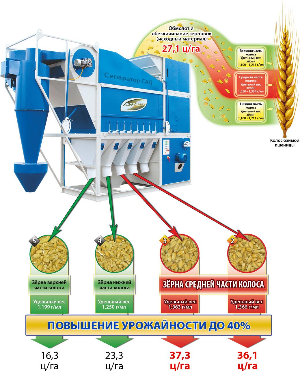 Схема Технологія здобуття високоврожайного насіння на зерноочистітельной машині САД