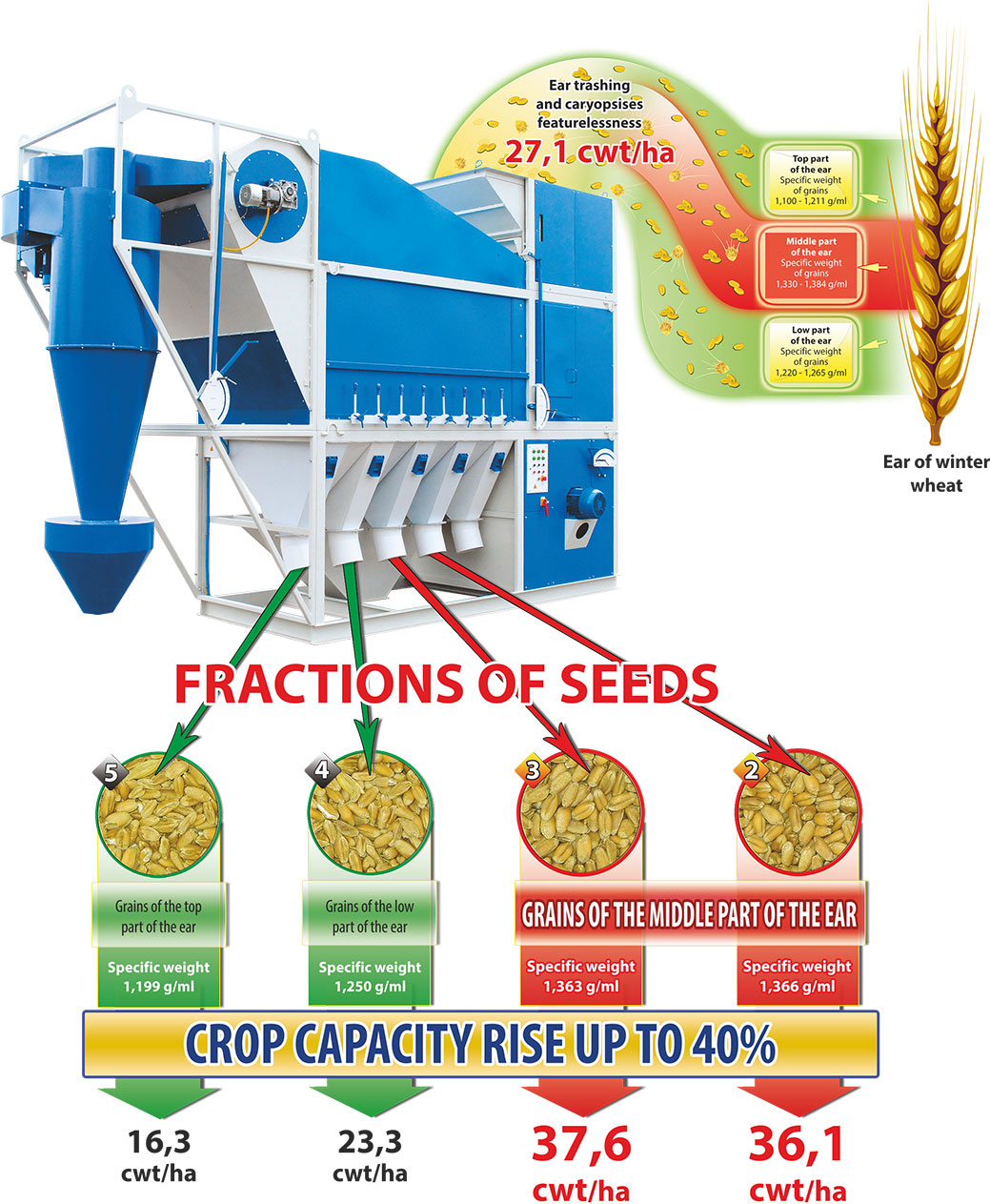 Technological scheme of seed production on graincleaning CAD machines